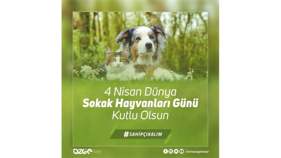4 Nisan Dünya Sokak Hayvanları Günü Kutlu Olsun.